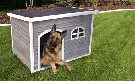 large house dogs extra large dog house groupon