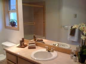 Staging A Bathroom Staging Bathroom Sell This House Pinterest