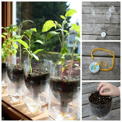 self watering planters diy diy gardening pictures photos and images for and