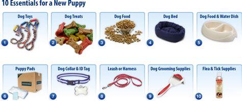 new puppy essentials 10 essentials for a new puppy mednet direct