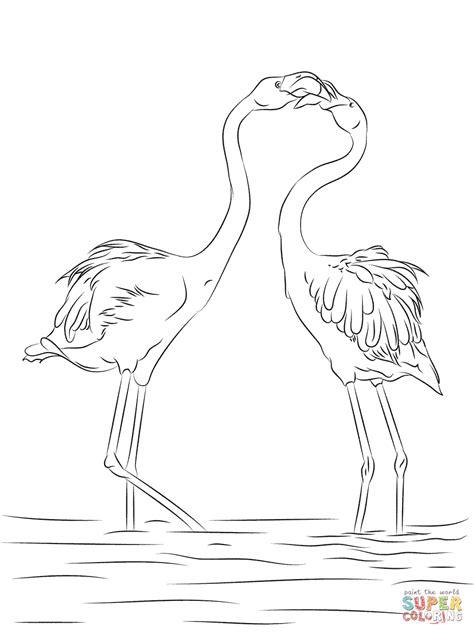 Dibujo de Dos bonitos Flamencos para colorear | Dibujos