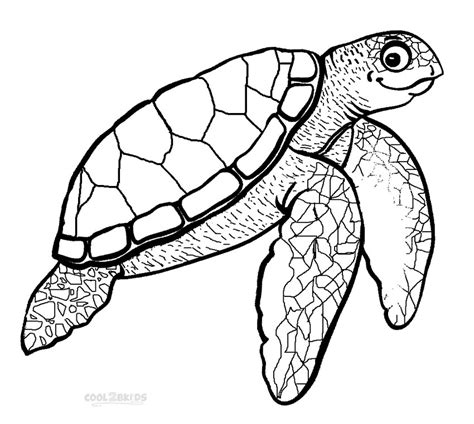 A Turtle Coloring Pages Turtles Coloring Pages