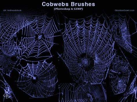 pattern brush gimp cobwebs photoshop and gimp brushes by redheadstock ps