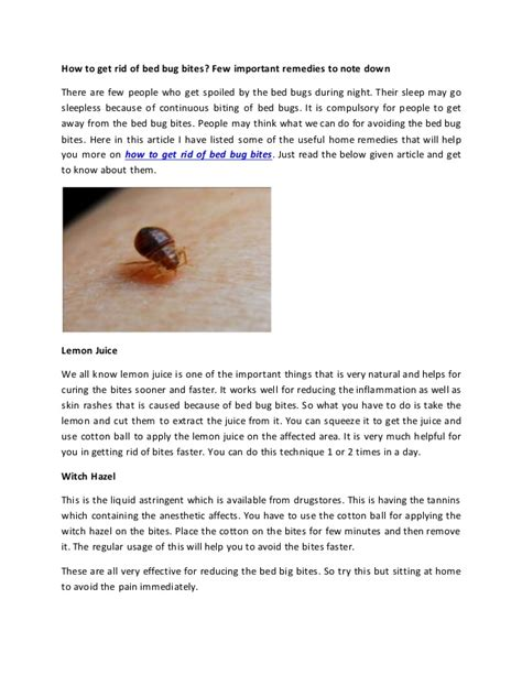 bed bug remedy bed bug remedies hot shot bed bug spray review bed bug
