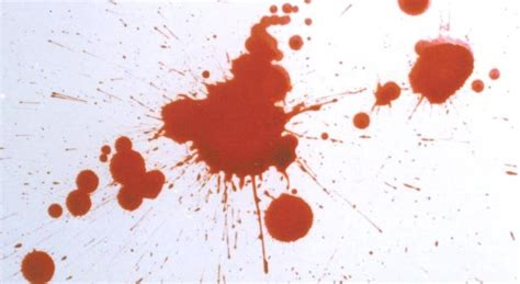 bloodstain pattern analysis wiki home bloodspatter com