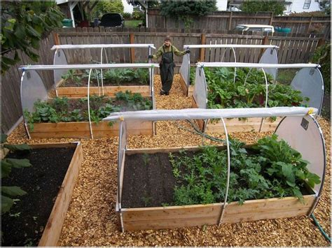 raised bed vegetable garden layout raised bed vegetable