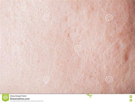 human skin texture stock photo image 76786839 human skin texture stock photo image of skin abstract 76786846