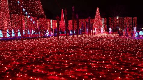 xmas lights in miami dade county best lights decorations in the usa broward county florida part 3