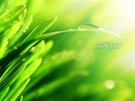 wallpaper eee pc asus asus t91 t101 mt wallaper download 3 netbook wallpapers