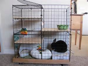 Cages For Rabbits Rabbit Cage Cake Ideas And Designs