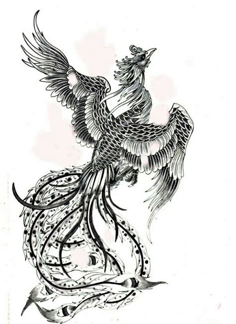 pheonix tattoos pin by glen hickson on inspiring ideas