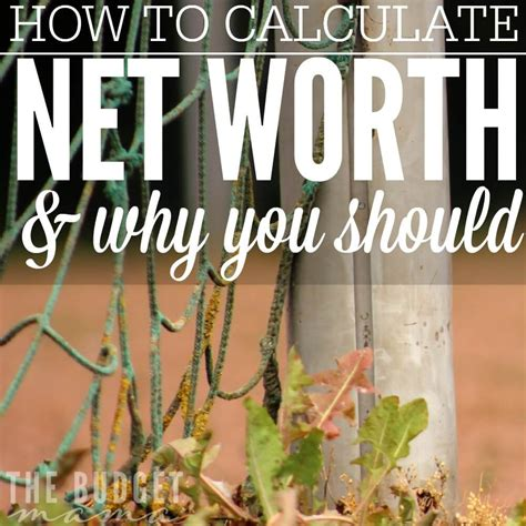 Find Net Worth How To Calculate Net Worth Why You Should Fearon