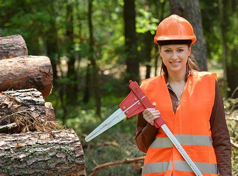 Bewerbung Ausbildung Forstwirt Forstwirt In Berufsbild Ausbildung Gehalt Und Bewerbung
