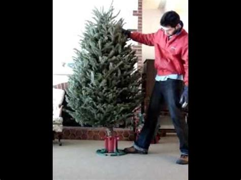 self adjusting christmas tree stands self adjusting tree stand automatic instantaneous set five 5s stand