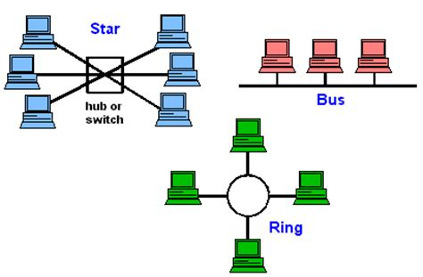 network layout meaning bus network dictionary definition bus network defined