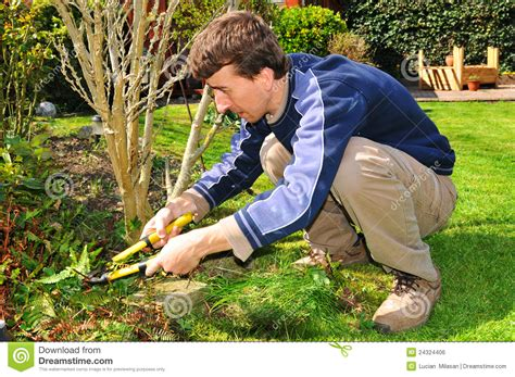 The Gardener by Gardener Stock Photo Image Of Green Manual Worker
