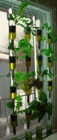 benefits  hydroponic gardening   knew
