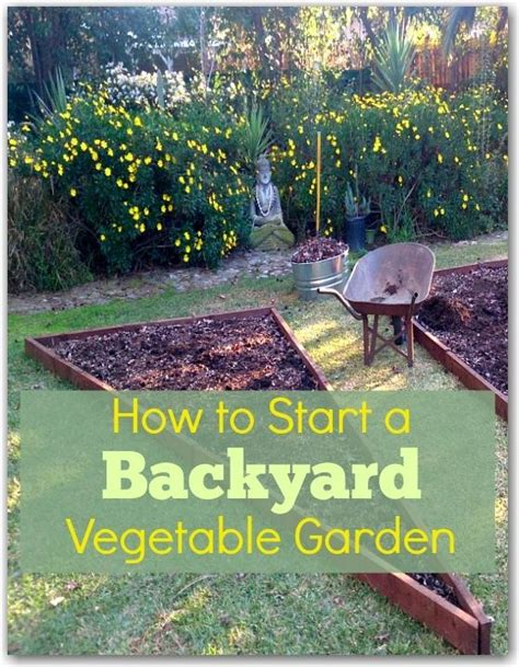 how to start a small vegetable garden in your backyard backyard vegetable gardens vegetable garden and