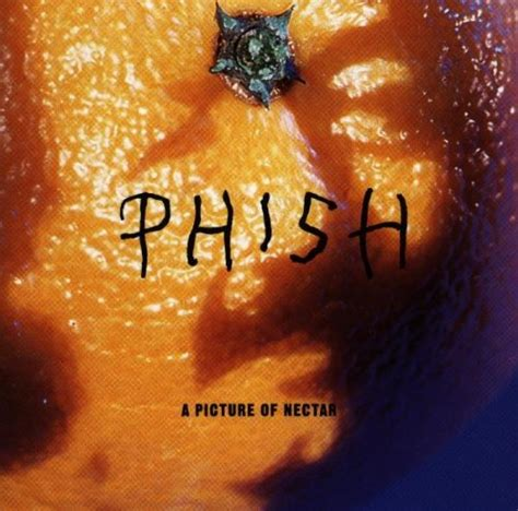 Picture Of A by A Picture Of Nectar By Phish Album Cover