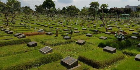 rumput kuburan rumput makam jual rumput taman