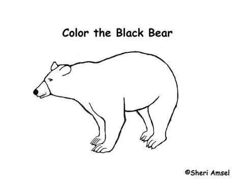 free printable coloring pages black bear american black bear coloring page az coloring pages