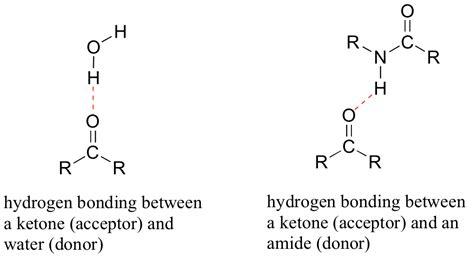 exle of hydrogen bond image gallery hydrogen bond exles
