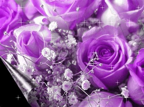 imagenes de rosas grandes hermosas flores rosas hermosas para regalar por facebook fotos de