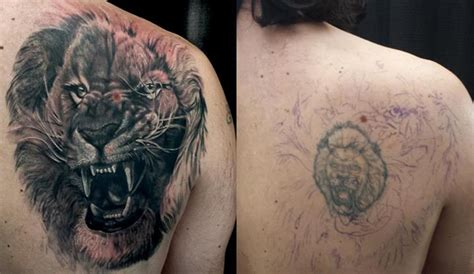 lion tattoo ideas cover up design idea for realistic growling cover up design best