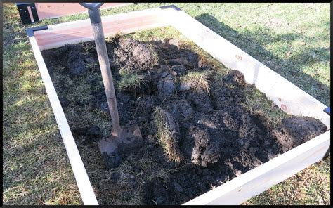 Soil For Raised Beds Raised Bed Garden Part 3 Dirt And Soil For Raised Bed Vegetable Garden