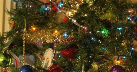 christmas tree oh christmas tree your ornaments are history oh tree oh tree your ornaments are history cats 1 koty