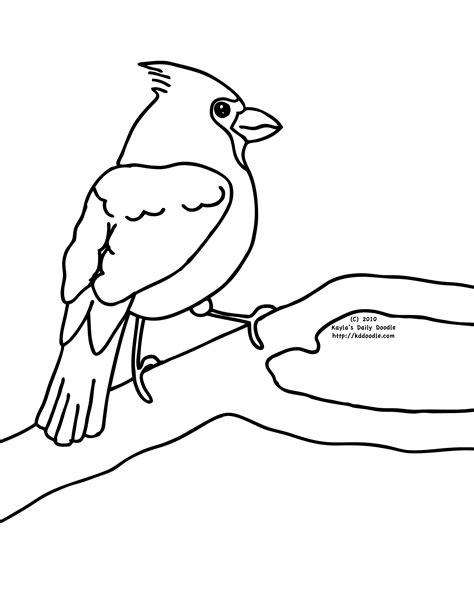 cardinal coloring pages preschool 60 click the maine state bird coloring pages bird