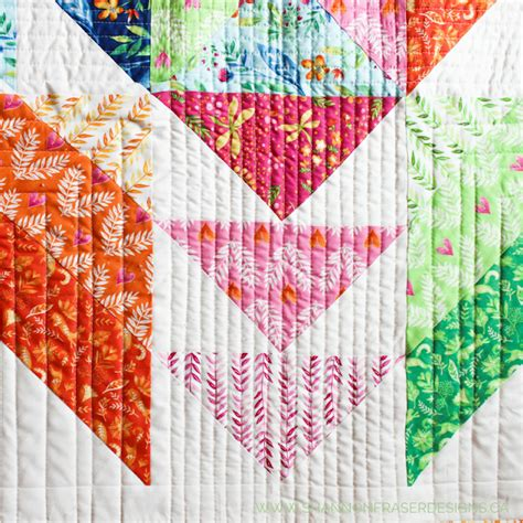 Quilting Frolic by Kayajoy 187 A Frolic Quilt By Shannon Fraser Designs