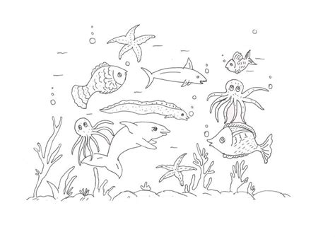 coloring page ocean animals free printable ocean coloring pages for kids