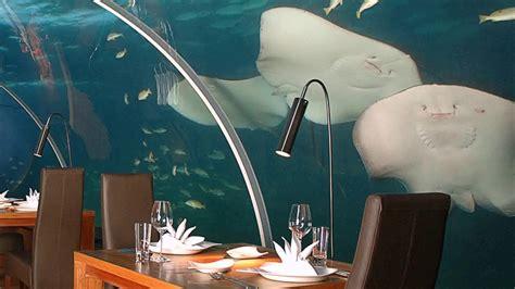 ithaa undersea restaurant prices ithaa undersea restaurant menu prices youtube