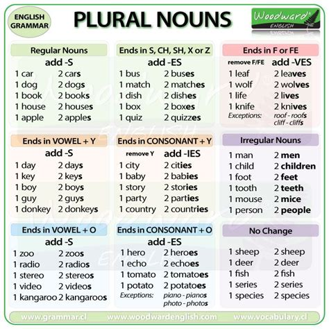 25 best ideas about plural nouns on plural of