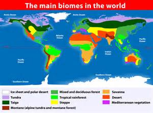 World Map Of Biomes by World Biomes Kidspressmagazine Com