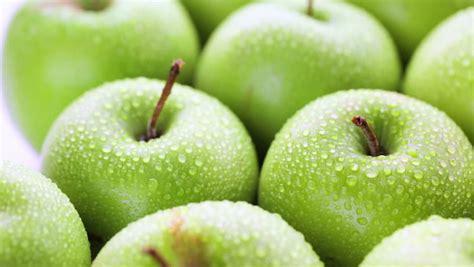 apple stem cell apple stem cell audela