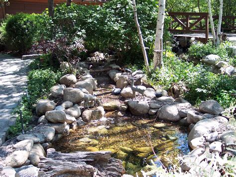backyard stream ideas backyard ponds 187 all for the garden house beach backyard