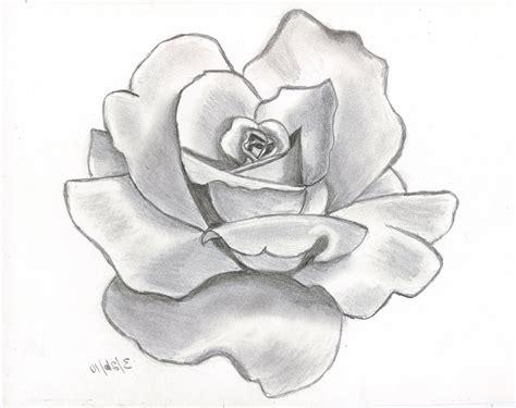 Gamis Roseflowry flower drawing drawing a flower easy drawing of flower flower drawing