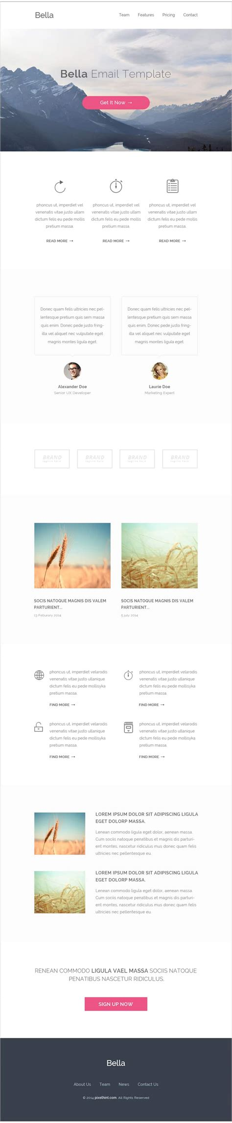 Free Email Newsletter Templates Psd 187 Css Author Free Email Template