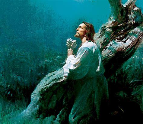 imagenes orando con jesus homil 237 a 20 de octubre de 2013 semanario fides