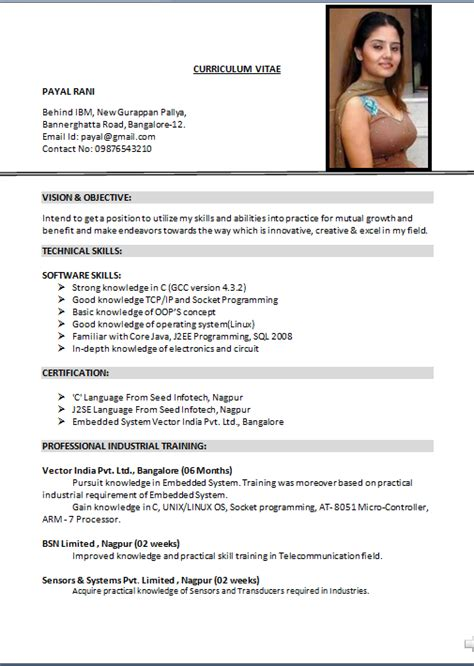 Best Resume Format Usa stay at home mom resume sample