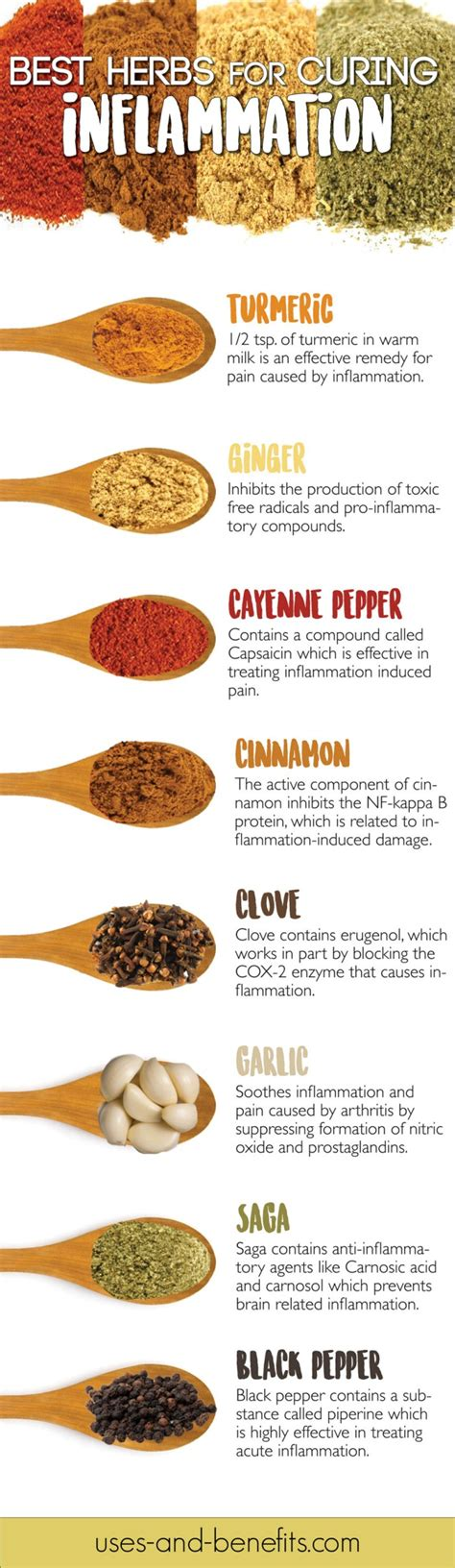 best medicine for inflammation best herbs for inflammation infection ayurveda