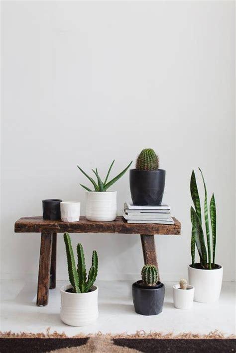 minimal home design inspiration les cactus sont partout le cactus obsession d 233 co www