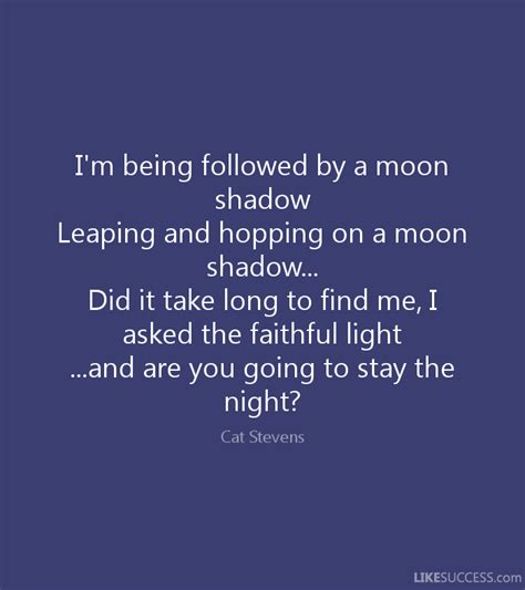 what to do if you are being followed 20 lessons on how to protect yourself and stay alive if you believe you are being followed by a mysterious books i m being followed by a moon shadow lea by cat