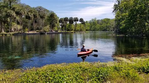 glass bottom boat tours silver springs silver springs state park wild monkeys and glass bottom