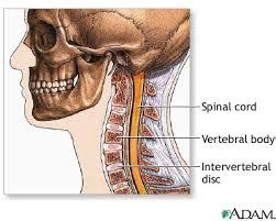 mal di testa frontale persistente cefalea cos 232 l origine ed i rimedi osteopatici