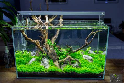 Diy Led Aquascape diy aquascaping led le selber bauen diy bereich dein meerwasser forum f 252 r meerwasser