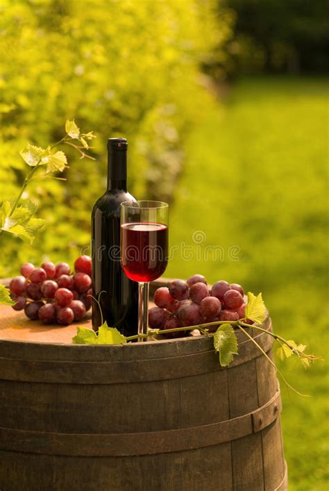 the italian dream wine 1614285195 red wine bottle wineglass and grapes in vineyard stock image image 20189223