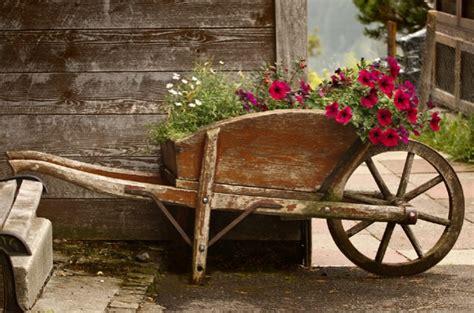alte schubkarre bepflanzen das gartenmagazin